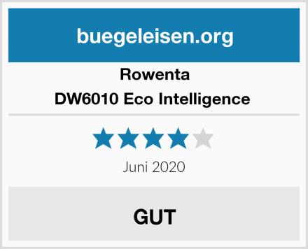 Rowenta DW6010 Eco Intelligence  Test