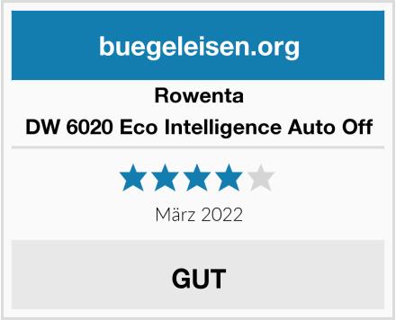 Rowenta DW 6020 Eco Intelligence Auto Off Test