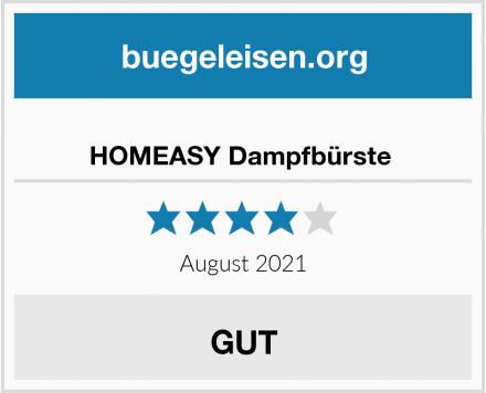 HOMEASY Dampfbürste  Test