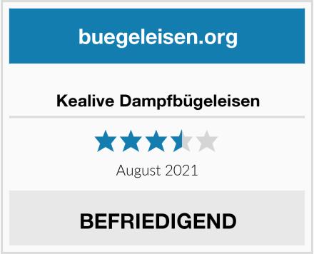 No Name Kealive Dampfbügeleisen Test