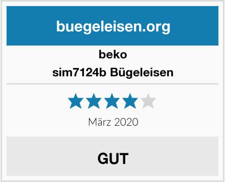 Beko sim7124b Bügeleisen Test