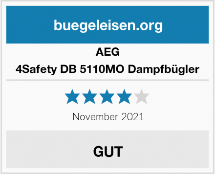 AEG 4Safety DB 5110MO Dampfbügler Test