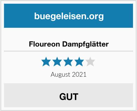 Floureon Dampfglätter Test