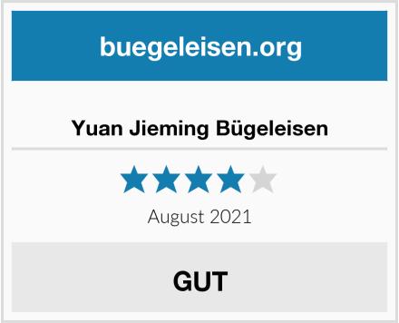Yuan Jieming Bügeleisen Test