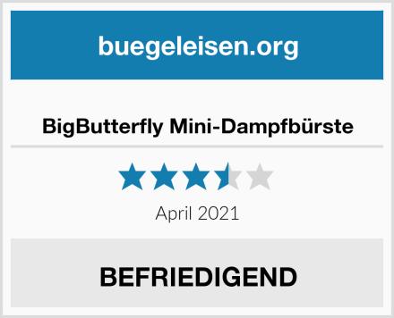 BigButterfly Mini-Dampfbürste Test