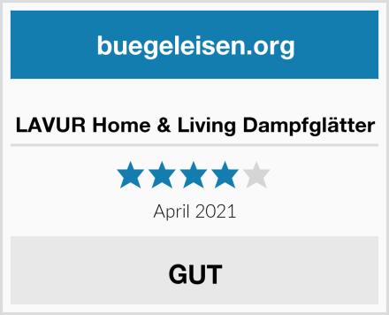 LAVUR Home & Living Dampfglätter Test