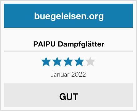 PAIPU Dampfglätter Test
